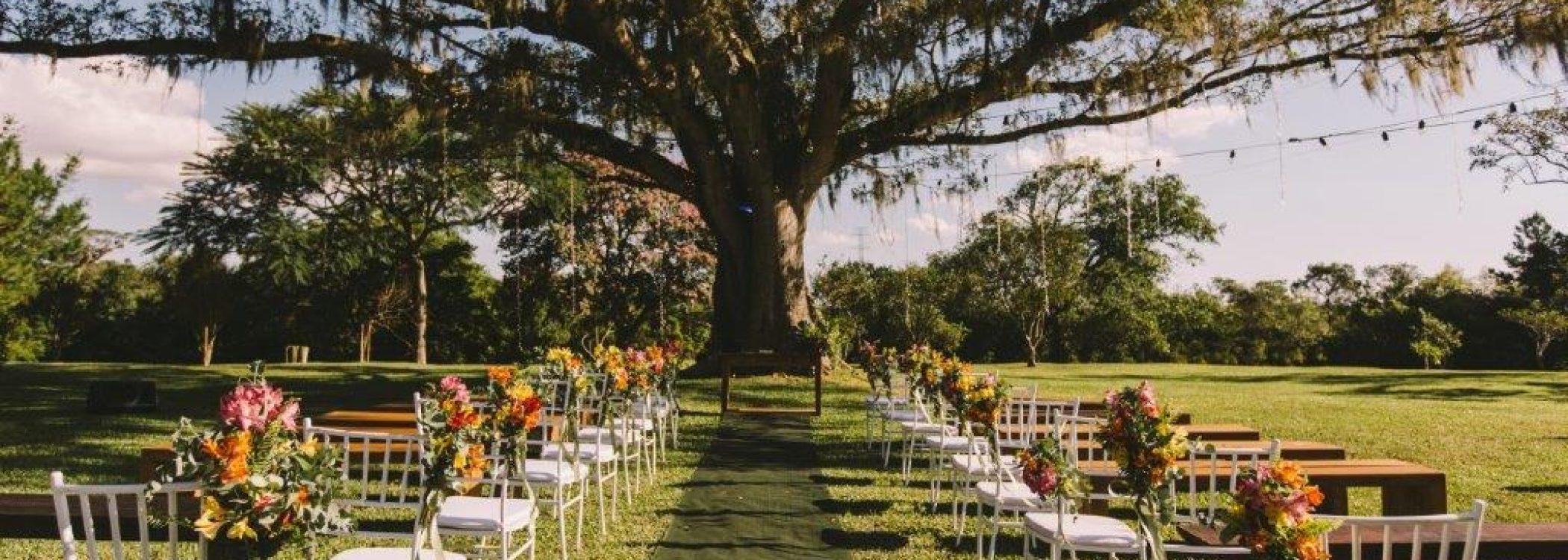 figueira-casamento-ao-ar-livre-alameda-figueira-